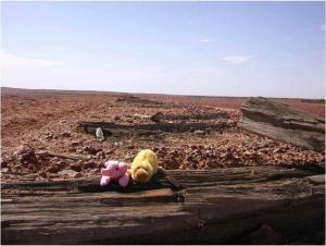 2004_australia